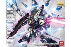 1/100 Providence Gundam Premium Edition MG - 217166